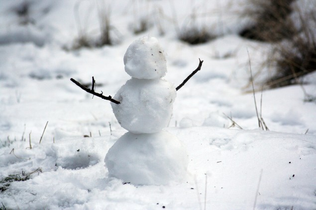 Six top tips for snow days
