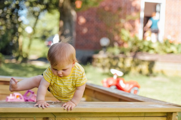Six top tips: Making your home and garden friendly for children and pets